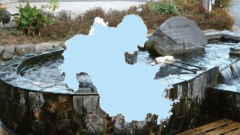 東九州の山々が生む【大分県の名水】4カ所をご紹介~名水百選より~