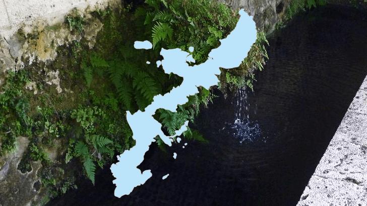 琉球の自然が育んだ【沖縄県の名水】2カ所をご紹介~名水百選より~