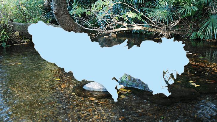 首都の大地が育んだ【東京都の名水】3カ所をご紹介~名水百選より~