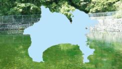 歴史が古く優れた【神奈川県の名水】3カ所をご紹介~名水百選より~
